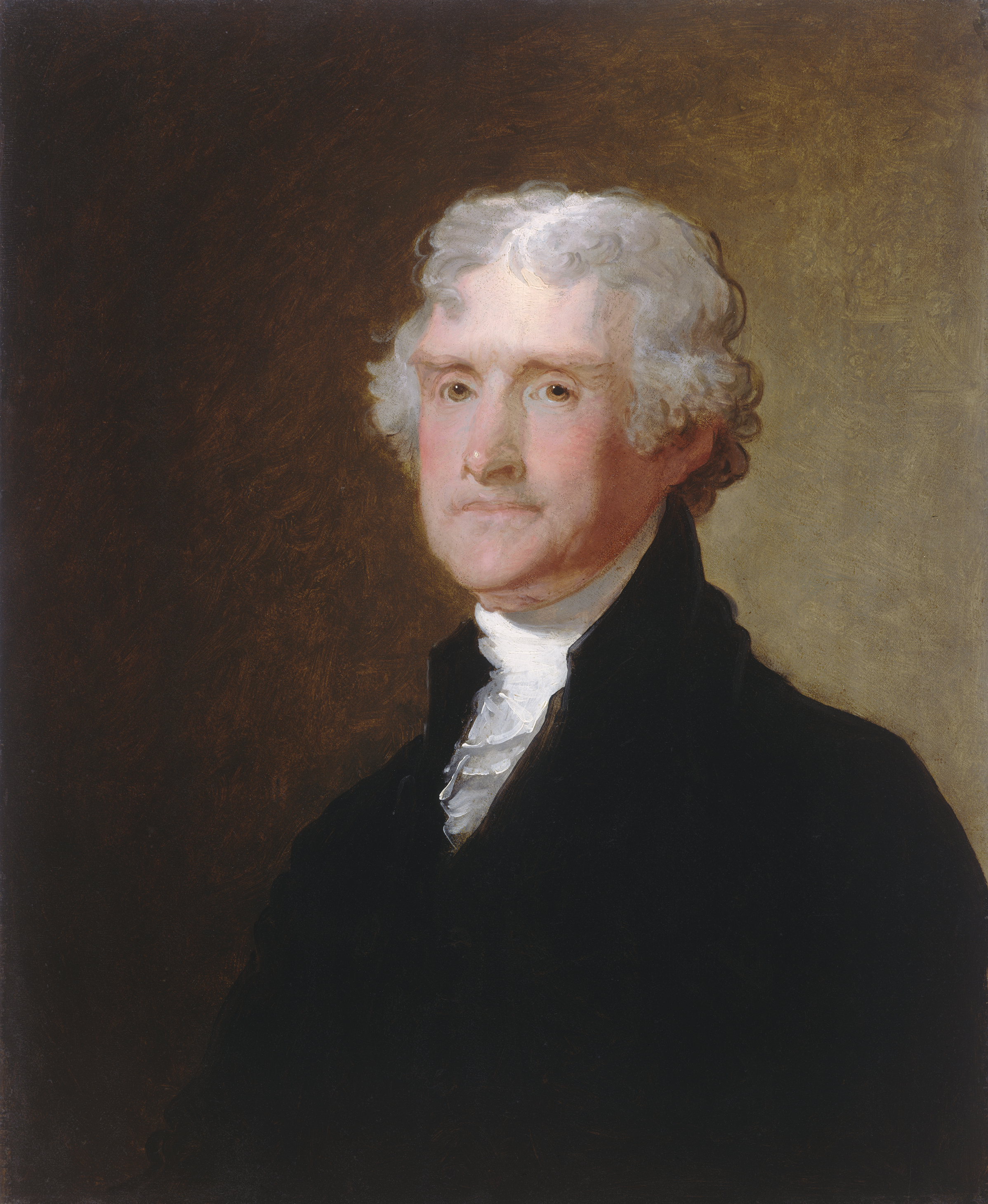 thomas jefferson Jefferson (philadelphia university + thomas jefferson university) is committed to research, discovery and creativity across disciplines we believe that we all learn something when our dreams intersect, and when we work together, we redefine what's humanly possible.